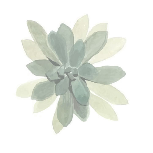 watercolor-leaves-placeholder